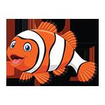 ARC Learn to Swim Program - Clown Fish